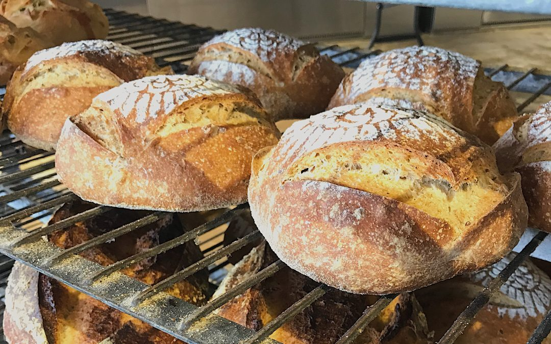 Finding Perfect Pairings for Artisan Bread